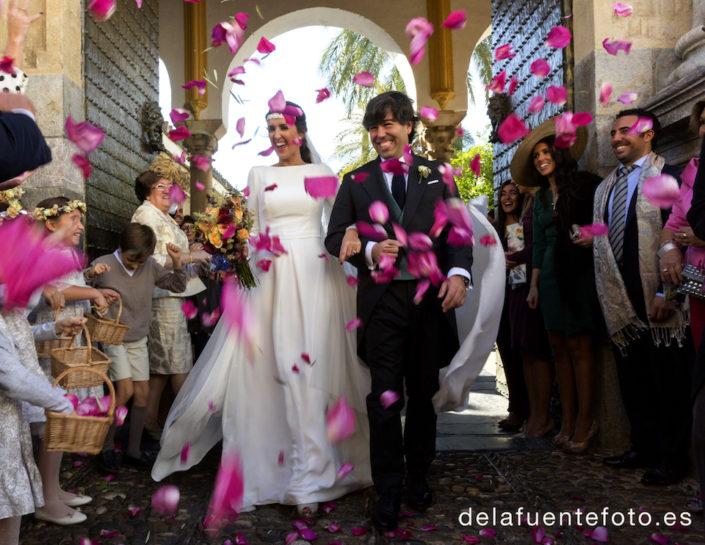 petalos de boda
